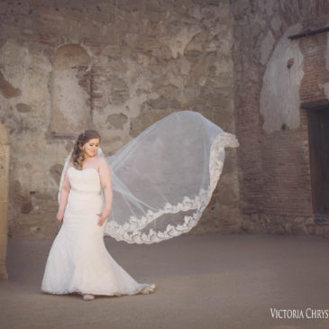Christina's Stunning Trumpet Lace Gown