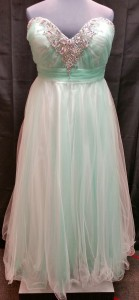 plus size tulle prom dress