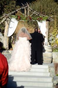 ruffle Allure wedding gown