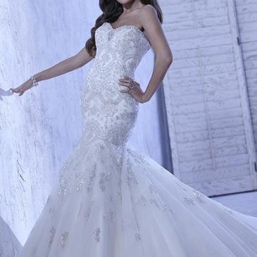 Mermaid Wedding Dresses with Sparkle