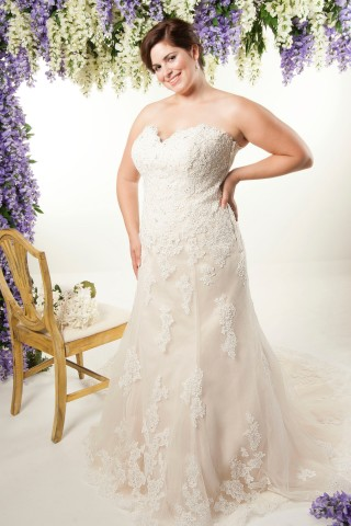 plus size lace trumpet wedding dress