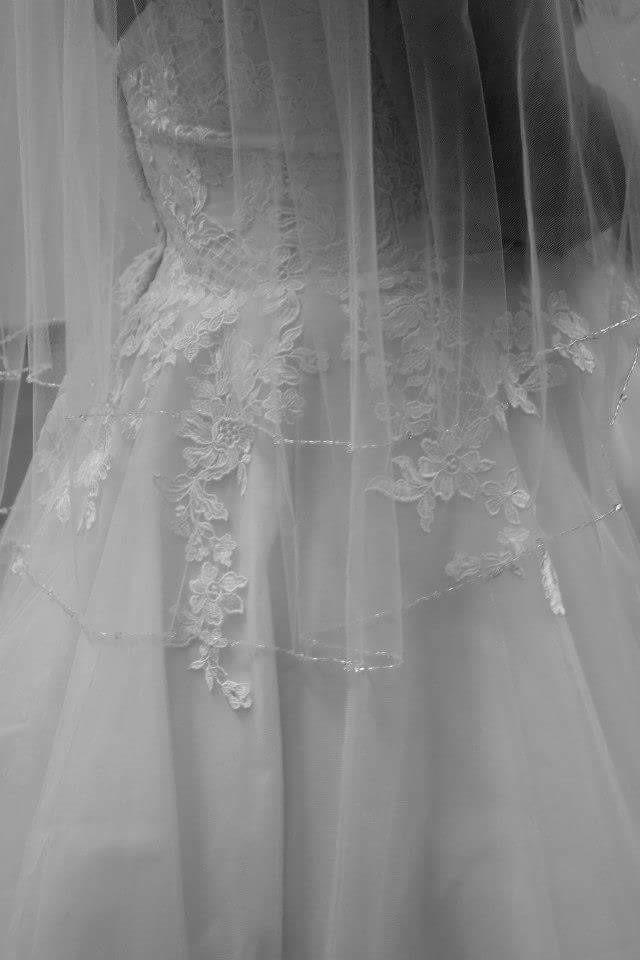 kelsy plus size wedding gown