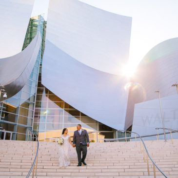 Sarah's Fitted Lace Wedding Dress in DTLA