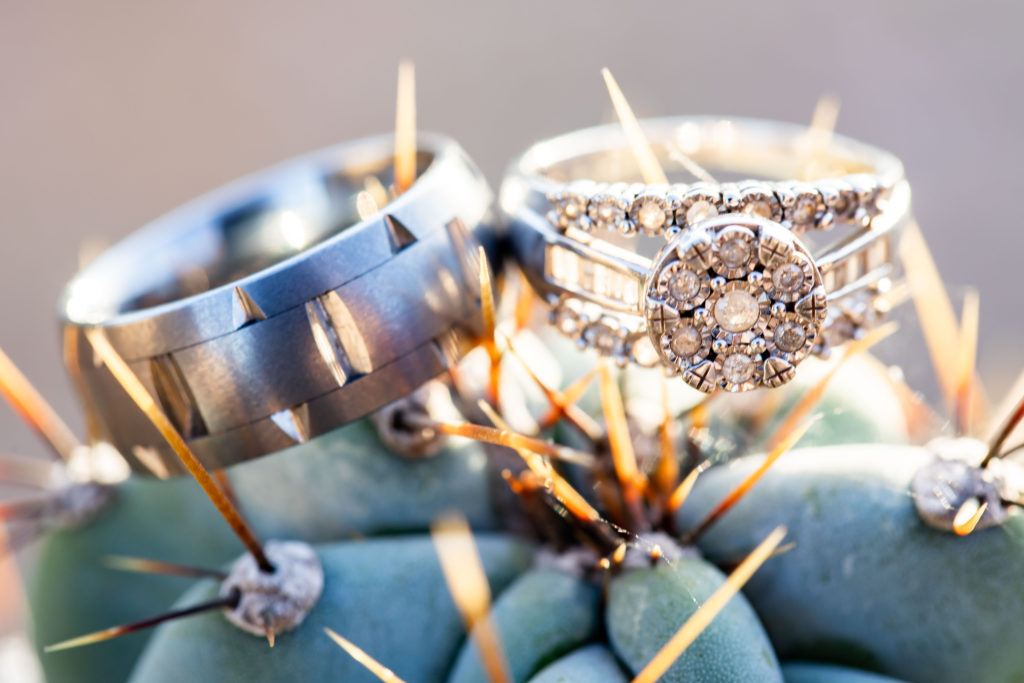 close up of wedding rings on a cactus