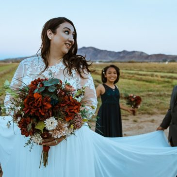 Brianne's Long Sleeve Two Piece Wedding Dress